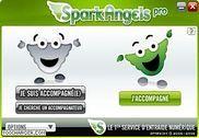 SparkAngels Réseau & Administration