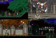 Castlevania The Lecarde Chronicles Jeux