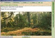 Forêt Finances & Entreprise