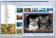 FastStone Image Viewer Multimédia