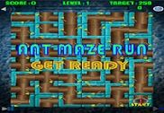 Ant Run Maze Jeux