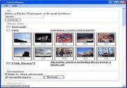 FlickrDown Internet