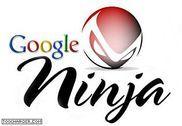 Ninja Programmation