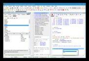 Tinn-R Programmation