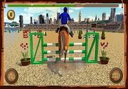 Horse Show Jumping Challenge Jeux