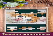 Jigsaw Master Jeux
