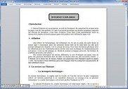 Internet Explorer Informatique
