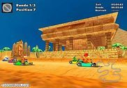 Crazy Chicken Kart 2 Jeux