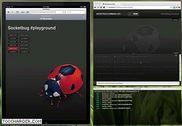 Socketbug Programmation