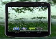 4K Rain Drops on Window Video Live Wallpaper Internet
