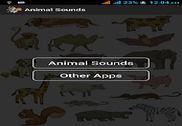 Animal Sounds Maison et Loisirs