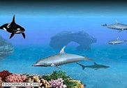 Crawler 3D Marine Aquarium Screensaver