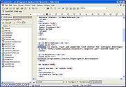 ConTEXT Programmation