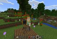 Minecraft Education Jeux