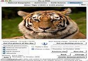 Pic-a-POD Personnalisation de l'ordinateur
