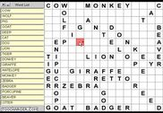 Wordsearch Maker Jeux