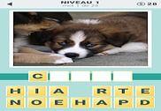 4 Indices: Quel est le mot! Jeux