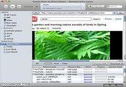 Elmedia Player Multimédia
