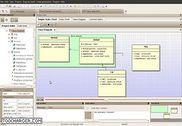 CodeDesigner Programmation