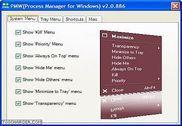 Process Manager For Windows Personnalisation de l'ordinateur
