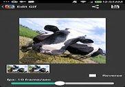 GIF Camera Multimédia
