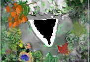 Lien Photo flower Frames Multimédia