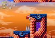 Sonic Twisted Time Jeux