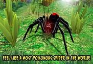 Black Widow Insect Spider Sim Jeux