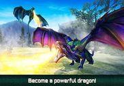 Dragons Fighting: Medieval War Jeux