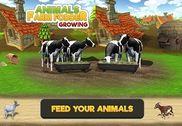 Animal Farm Fodder Growing Jeux