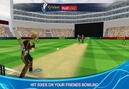 Cricket Multiplayer Jeux