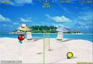 Volley Balley Jeux