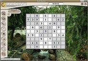 Super Sudoku Jeux