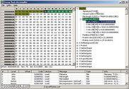 Dump Flash decompiler Multimédia
