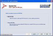 Kernel for PDF Split and Merge Bureautique