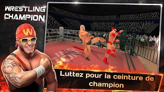 Champion de Lutte 3D