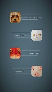 Animals in Casuals