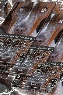 Thème du clavier Pitbull