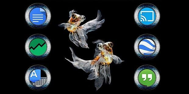 Thème Gold Fish Solo