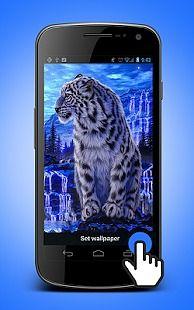 White Tiger Live Wallpaper