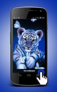 White Tiger Animated Wallpaper