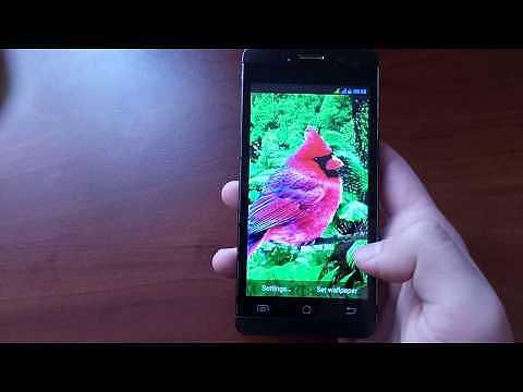 3D parallax d'oiseaux Live Wallpaper