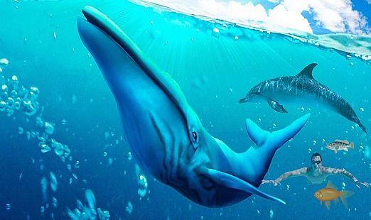 Super Requin Attaque Évolution Simulateur 3D