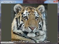 Keyboard Image Viewer
