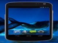 4K Whales Video Live Wallpaper