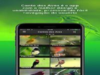 Todos Cantos Pássaros Brasil - HD