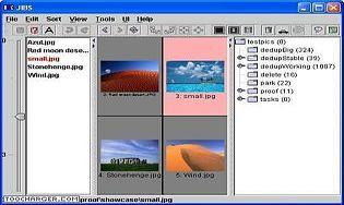JIBS - Java Image Browser Sorter