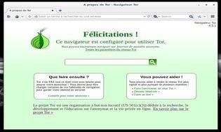 Tor Browser (Vidalia Bundle) Linux