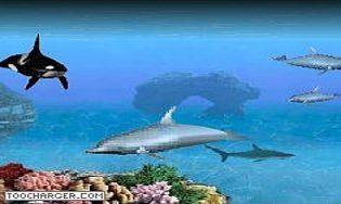 Aquarium virtuel 3d pour pc gratuit gratuits propos s - Telecharger table de mixage gratuit pour pc ...