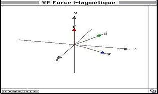 YP Force Magnétique